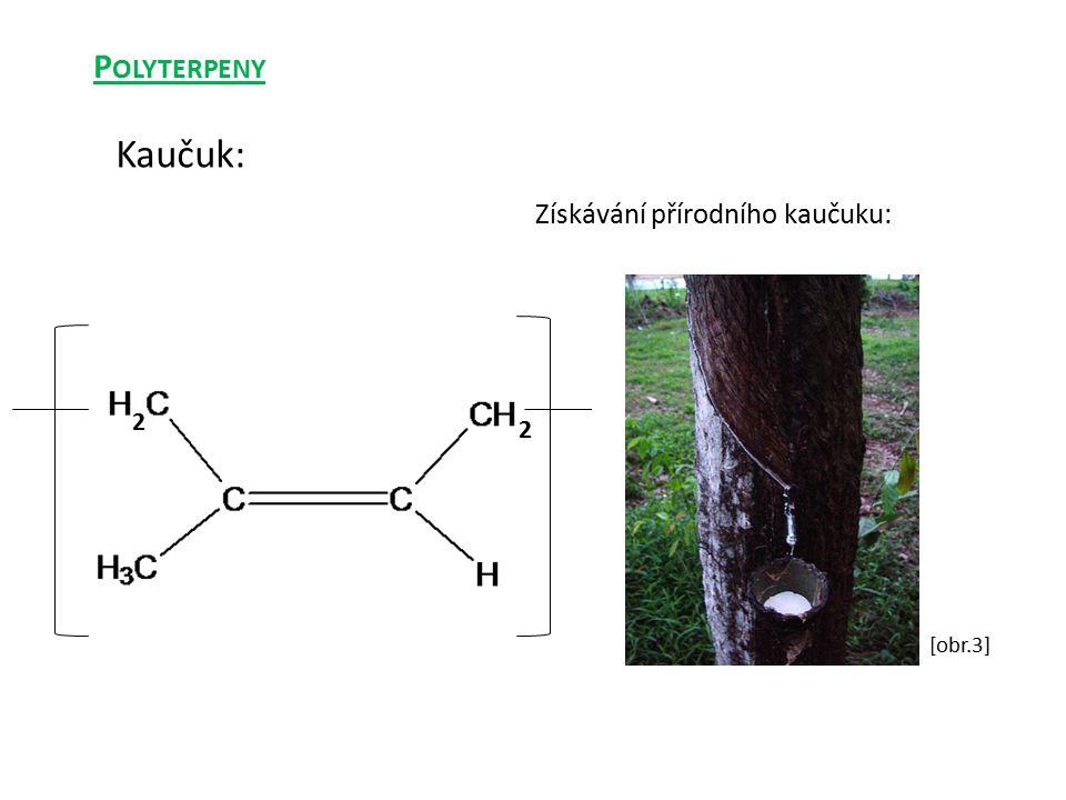 Polyterpeny Kaučuk: Získávání přírodního kaučuku: 2 2 [obr.3]